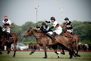 Polo activity
