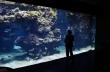 Oceanographic Museum